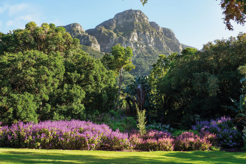 the-glen-apartments-attractions-kirstenbosch